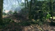 Argonne Forest Kaiser's Ridge 04