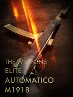 Elite Automatico M1918 Codex Entry.PNG
