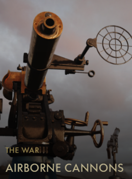 Airborne Cannons Codex Entry.PNG