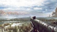 Chauchat Idle BF5