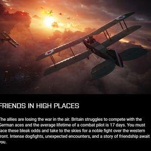 Friends in High Places Description.jpg