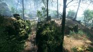 Argonne Forest 10