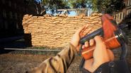 BF5 M1A1 Carbine Beta 05