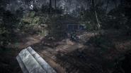 Argonne Forest 02