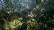 Argonne Forest Frontlines Hunter's Cabin 01