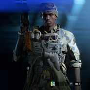 Battlefield V Open Beta United Kingdom Grenadier