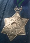 Outstanding Operational Gallantry Medal.PNG