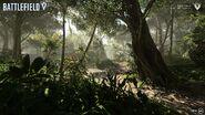 Into The Jungle Art