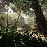 Into The Jungle Art.jpeg