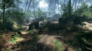 Argonne Forest 22