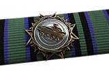 Ribbons (Battlefield 4)