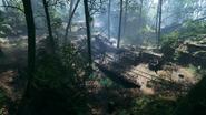 Argonne Forest 21