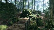 Argonne Forest Frontlines Creek 02
