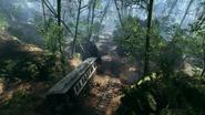 Argonne Forest 20