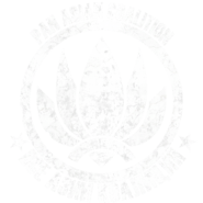 BF4 PAC Emblem