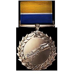 Support Order Of Valor Battlefield 1 Wiki