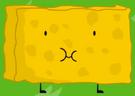 BFDI 14 Spongy 10