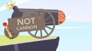 Not cannon 2