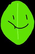 Round Leafy