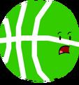 Green Basketball