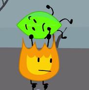 Fireyandleafyhold