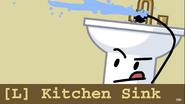 Kitchen Sink Audit