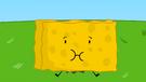 BFDI 22 Spongy 6