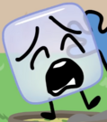 Icecube sufferage