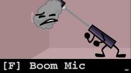 Boom Mic Audit