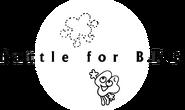 BFB Logo BFB 17