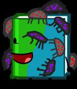 Book bugs