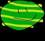 BFB 16 Watermelon