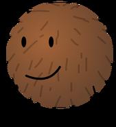 BFDIA Coconut