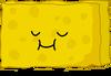 SpongyVoting