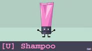 Shampoo Audit