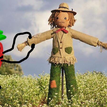 Strawberry Scarecrow.jpeg