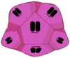 Foldy Dodecahedron Virus