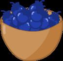 Blueberry Basket