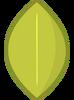Green Apple Leafy