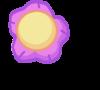 Flower Procyon Deneb body