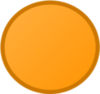 CO Orange New Body