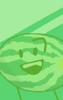 Watermelon's BFB 17 Icon