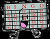 Bingo Borad BFSU