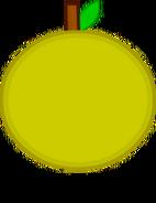 Grapefruit Body