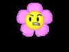 New flower pose