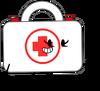 First Aid Kit (Pose)