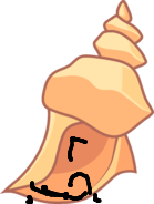 Conch Shell (BFTPITS)