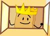 King Woody Viewing Window 2