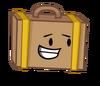 Suitcase Pose