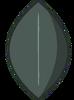 Blackberry Leafy